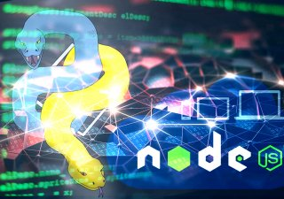 hire nodejs developers in chicago, hire python developers in chocago