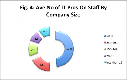 it professionals by company size