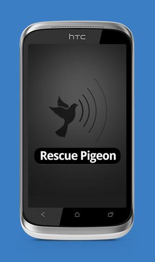 rescue piqeon